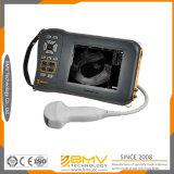 Farmscan L60c Hot Vendre Portable Scanner Grands animaux Ultrason avec Convex Probe