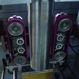 Machine à emballer neuve de fabrication de Foshan pour des fruits secs