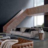 Sofà del tessuto di disegno moderno della mobilia del salone (F629-12)