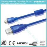 OEM 3.3FT de vente chauds AM à la rallonge USB d'Af
