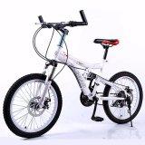 Heiße verkaufende weiße Kohlenstoff-Fahrrad-Leistung BMX (MTB-36)
