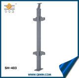 Venta caliente Handrial para vidrio SH-403