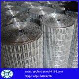 中国の工場価格は溶接された金網に電流を通した