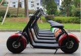 [أرّيفر] جديد كهربائيّة مدينة [سكوتر] مع [ميلج&] طويلة اثنان عجلات سمين