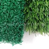 [10مّ] نوعية ممتازة يصنع عشب اصطناعيّة حديقة لأنّ [فيش تنك]