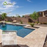De hete Verkopende Tegels van het Zwembad van het Kalksteen van de Room met Goede Prijzen