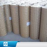 O PVC revestiu o quadrado do fio/o engranzamento soldados galvanizados do cerco para a gaiola de pássaro