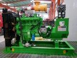 100kw de Reeks van de Generator van het Aardgas met de Uitvoer van 6135 Motor naar Rusland