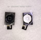 Mobiele Phone Home Button Flex Cable voor iPhone 4S
