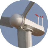 양자택일 Energy Power Generator 10kw Wind Turbine Generator