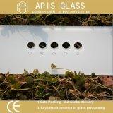 vidro Tempered de 3mm-12mm para o vidro de vidro do aparelho electrodoméstico de dispositivo de cozinha