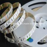Tiras em mudança do diodo emissor de luz da cor do RGB para a decoração home