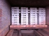 De Oven van de tunnel voor het Branden van Bakstenen &Tiles