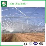 Invernadero de aluminio del plástico del perfil de la agricultura