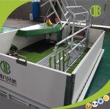 Caisse alimentante de ferme de porc de matériel d'agriculture de système de porc automatique pour la truie