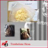 Lo steroide grezzo completa Parabolan Trenbolone Hexahydrobenzylcarbonate