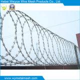 網の塀のためのかみそりの有刺鉄線の製造者