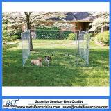 Hochleistungsrahmen-Haustier-Hundekatze-Metallspiel-Feder-Hundehütte