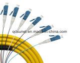 treccia legata ottica su un lato della fibra di 12cores MP