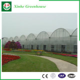 Serra del film di materia plastica di agricoltura per gli ortaggi/fiori/giardino
