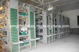 흘려지는 중국 저가 및 고품질 빛 강철 구조물 가금 집 닭 (XGZ-TX-0302)