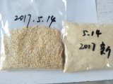 Grão de alho à base de alho temperado e com pimenta quente 26-40mesh Export to North America