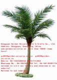 Haute qualité de Coco Palmier artificiel de Gu5435003362361344793452