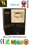 Sistema acustico di Sanway R1 contenitore di altoparlante di Subwoofer di 12 pollici