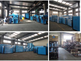 중국 ISO9001-2008 공장 쌍둥이 나사 공기 AC 압축기