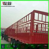 3 Eixos 60 Ton Van Cargo Stake Truck Trailer