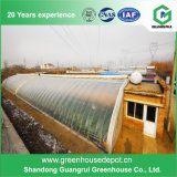 Hot Sale Agricultural Greenhouse Flower Film Green House pour Graden
