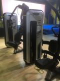 Forte strumentazione rotativa di /Strength della strumentazione di forma fisica del torso Bn-011/del corpo