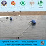 Mit hoher Schreibdichtepolyäthylen HDPE Geomembrane mit ASTM