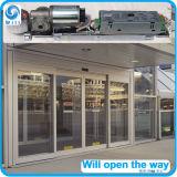 Operador automático de la puerta de Es200 Es200e Es90