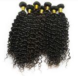 Горячая Продажа 100% Реми Virgin бразильского французский вьющихся волос Extensions
