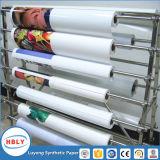 Plastique d'injection en papier synthétique utilisé par étiquette de moulage