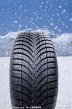 Pneumatico di inverno del pneumatico della neve
