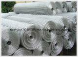 Meilleures ventes ! Treillis soudés en acier galvanisé (ISO9001)