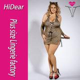 Hot fille sexy taille XL L'école enseignant Costume Sexy Lingerie avec motif à carreaux Fancy Dress jupe et bas
