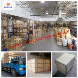 Het Chinese Diepe Kogellager Van uitstekende kwaliteit van de Groef Manufacturered (6304)