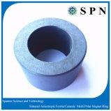 De permanente Ring van de Magneet van de Motor van /Ceramic van de Magneet van het Ferriet
