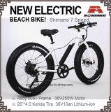 뚱뚱한 타이어 전기 자전거 바닷가 함 전기 자전거 250W 350W 500W 36V 48V