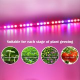 Full Spectrum COB 1200W luz LED multibanda para plantas