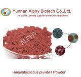 Astaxanthin van 2% Poeder 100% het Natuurlijke Poeder van Haematococcus Pluvialis, het Uittreksel van de Installatie