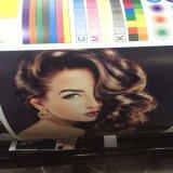 Ci à grande vitesse du type machine d'impression de Flexo pour le roulis de papier