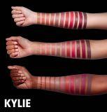 2017 de Nieuwste Doos 11PCS Lipgloss Van uitstekende kwaliteit van de Lippenstift van het Fluweel van de Steen van Kylie Jenner Vloeibare Vastgestelde Kosmetische