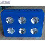 6 o diodo emissor de luz das microplaquetas 42*3W da ESPIGA cresce 756W claro
