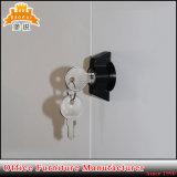 Aktenschrank des Metallmöbel-Stahl-Flach-Packen Tür-Büro-zwei
