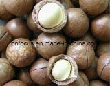 Macchina imballatrice automatica verticale per il pacchetto Nuts delle arachidi
