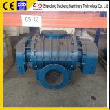 A DSR300 Raízes de deslocamento positivo Blower com o tipo de compressor